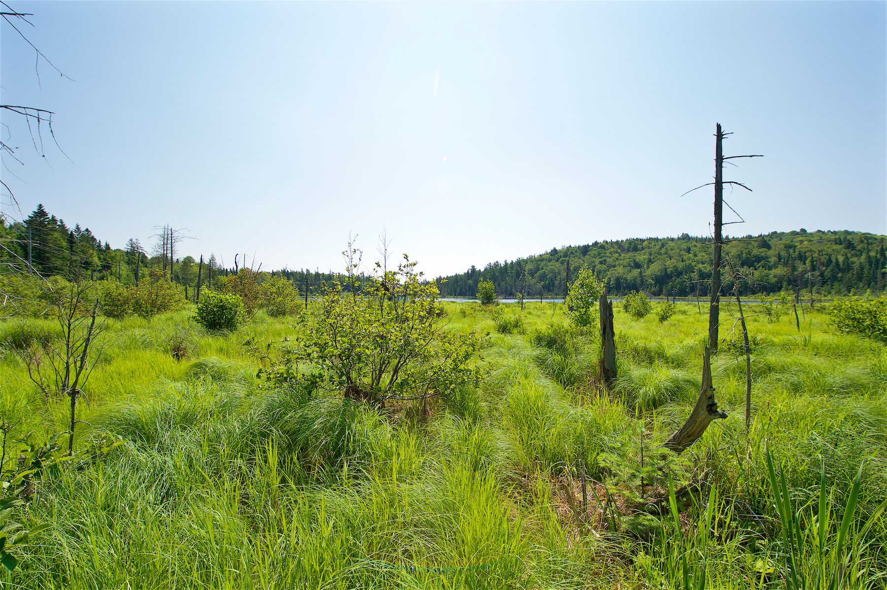 Vacant lot for sale, Val-David